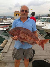 Urta Manolo 6 kg 07-09-2013