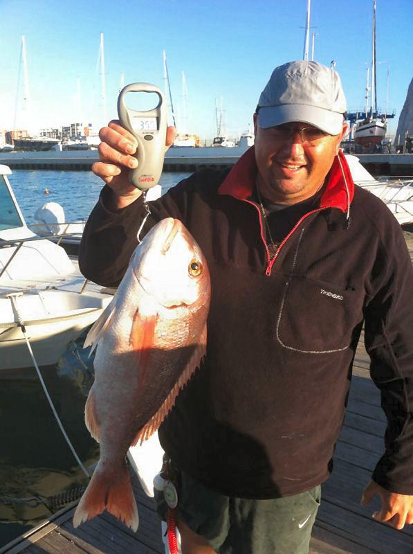 Pargo loren 3,77 kg 11-11-13